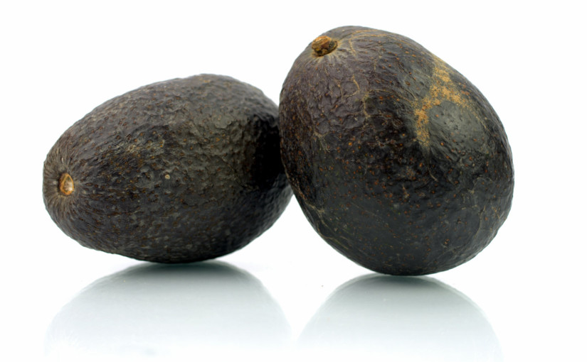 Two Fat Avocados